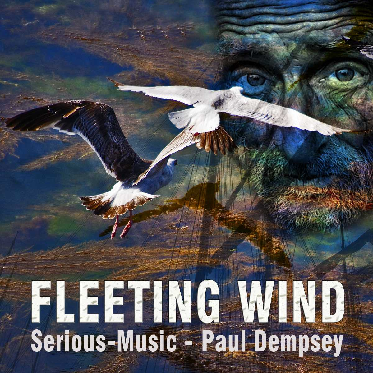 Fleeting Wind feat. Paul Dempsey - Album ECHOES OF YESTERDAY